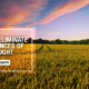 Drought Management and the Development of Agricultural Infrastructure RealtyMyths
